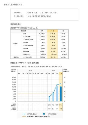 WellnessLINK_Monthly_Report_201305_04.jpg
