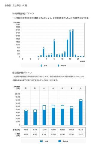 WellnessLINK_Monthly_Report_201305_05.jpg