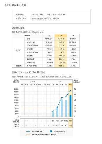 WellnessLINK_Monthly_Report_201306_04.jpg