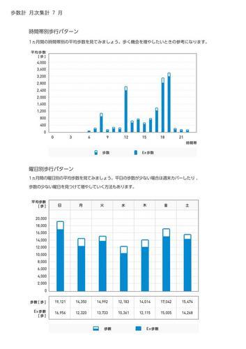 WellnessLINK_Monthly_Report_201306_05.jpg