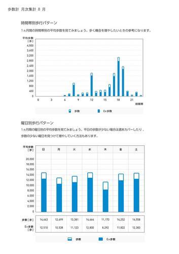 WellnessLINK_Monthly_Report_201307_05.jpg