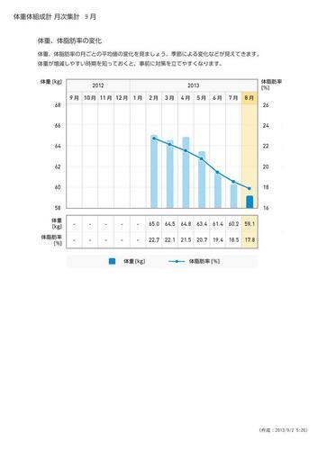 WellnessLINK_Monthly_Report_201308_03.jpg