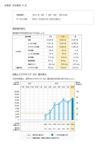 WellnessLINK_Monthly_Report_201308_04.jpg