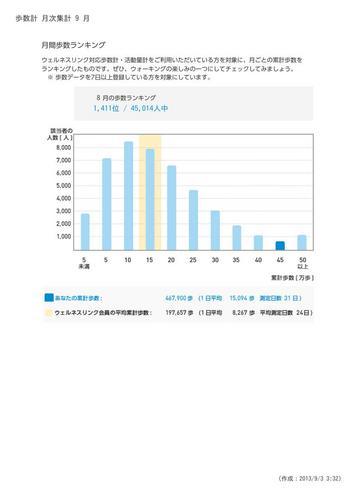 WellnessLINK_Monthly_Report_201308_06.jpg