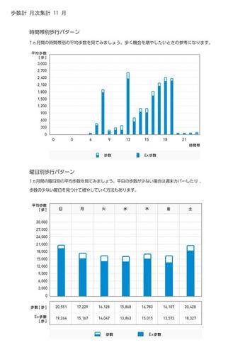 WellnessLINK_Monthly_Report_201310_05.jpg