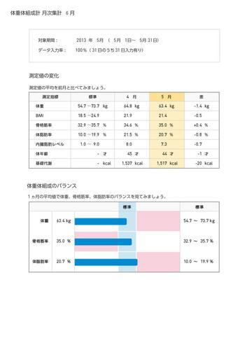 WellnessLINK_Monthly_Report_201305_01.jpg