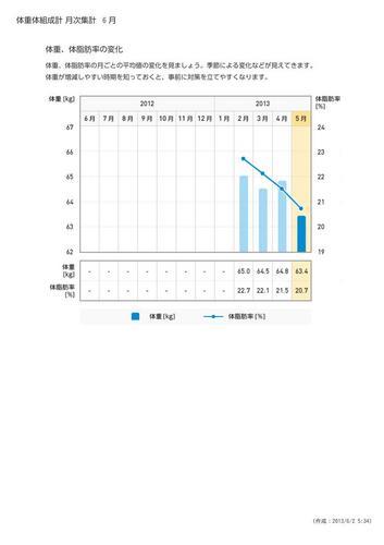 WellnessLINK_Monthly_Report_201305_03.jpg