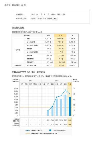 WellnessLINK_Monthly_Report_201307_04.jpg