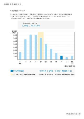 WellnessLINK_Monthly_Report_201307_06.jpg